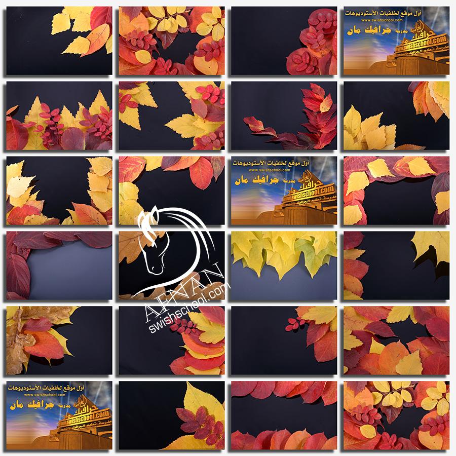 خلفيات سوداء مع اوراق الخريف عاليه الدقه للدذاين jpg