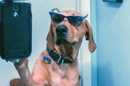 ��� ������� ����� - ���� selfie