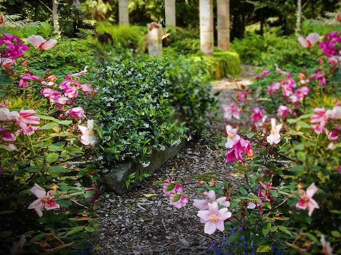 قالب حديقه مع الزهور  psd متعدد الليرات - جديد 2014