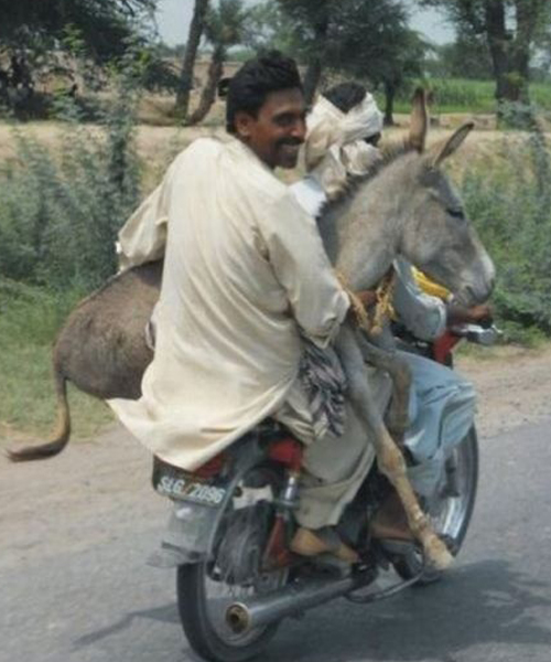 صور مش ممكن تشوفها غير في الهند