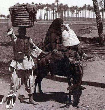 صور الريف المصري