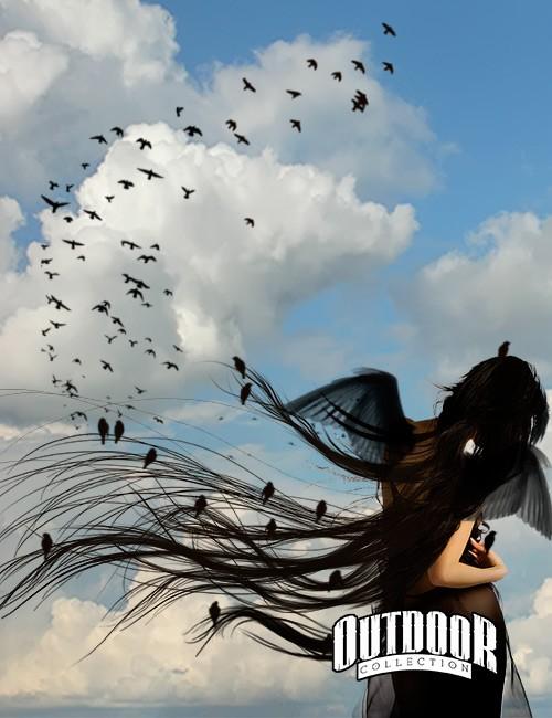 فرش سرب طيور, فرش فوتوشوب طيور بالسماء, فرش سرب الحمام