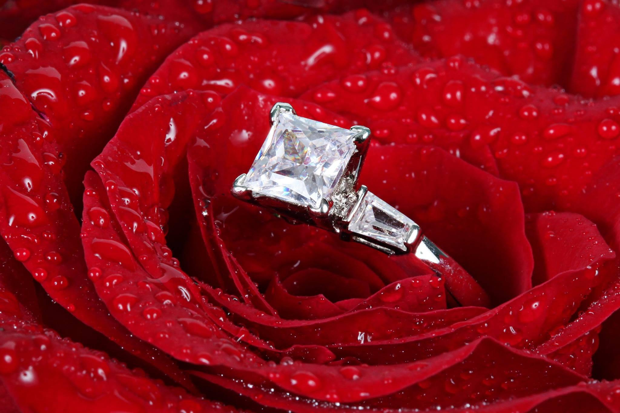 صور عريس وعروسه يوم الزفاف 11 صور عريس وعروسه يوم الزفاف
