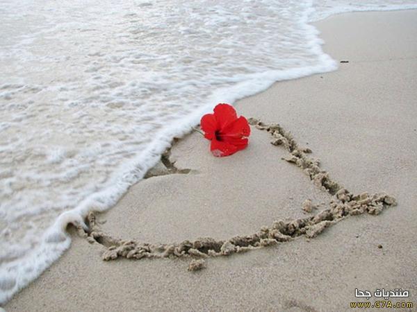 صور عشق 10 صور حب ، صور حب رومانسيه ، اقوى صور عشق و غرام Love images