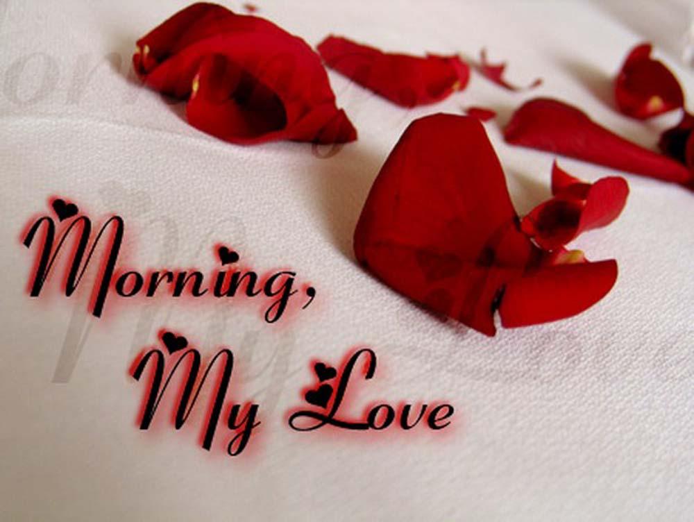 Good Morning My Love 10 صور صباح الخير حبيبي