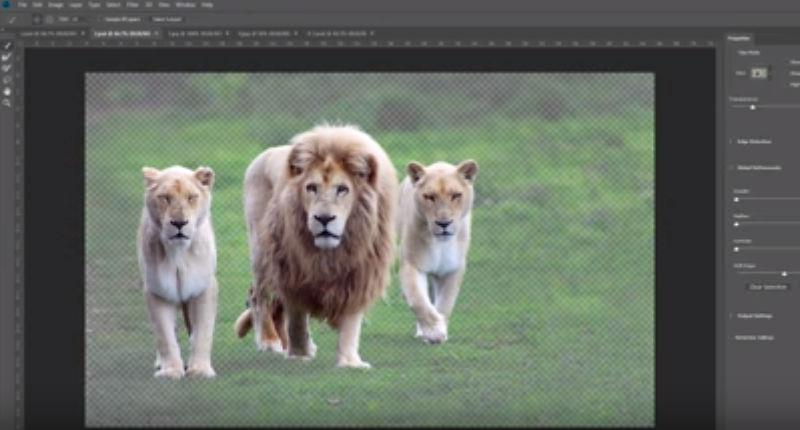 التحديد الاوتوماتيك ميزه جديده في الفوتوشوب 2018 تحديد ألي للصور Select Subject