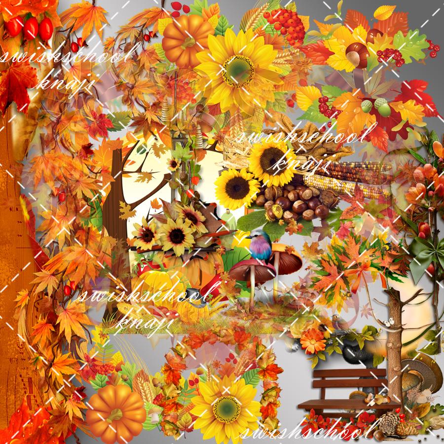 مجموعه رائعه من الزهور واوراق الخريف 1 2015