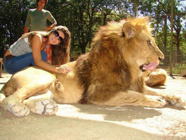 """حديقة حيوان """"لوجان"""" في الأرجنتين حيث أقفاص الحيوانات المفترسة تكون مفتوحة للكل"""
