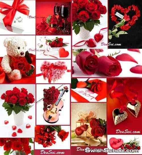 خلفيات ورد احمر وفالنتاين وحب