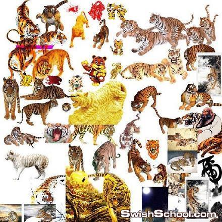 خلفيات للنمور Tigers PSD