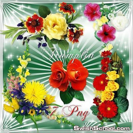 فيونكات وفراشات واكسسورات وزهور وقلوب  كولكشن جميل بصيغه png