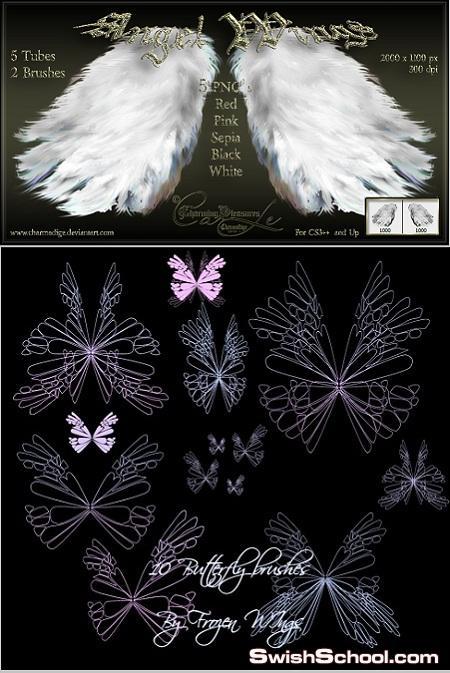فرش اجنحه جديده للفوتوشوب  wings brushes 2012