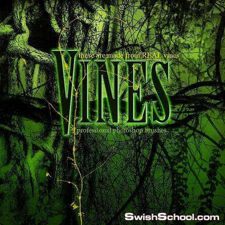 فرش فروع اشجار متسلقه Rons Vines bruhes