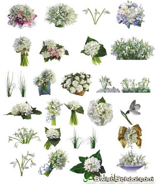 سكرابز زهور بيضاء