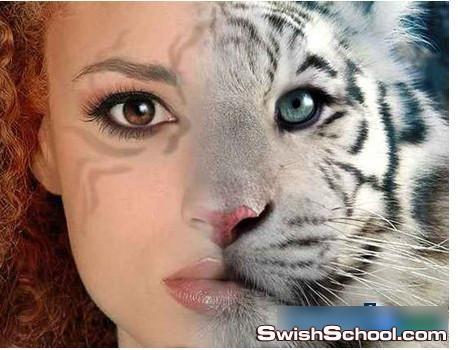 قالب تركيب الوجه لشخصيه المراه القطه