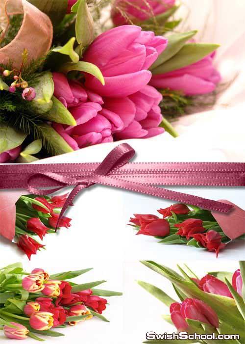 كوليكشن خلفيات زهور