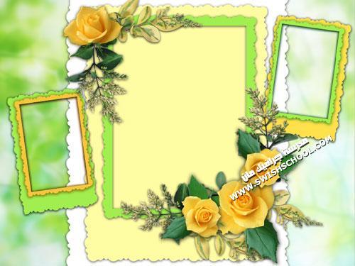 براويز باللون الاصفر و الاخضر
