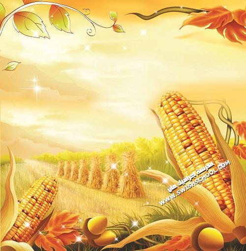 جديد ملف  psd يحمل  طبيعة الريف
