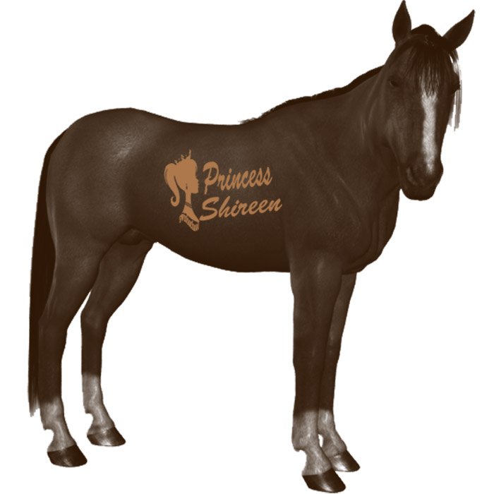فرش خيول احترافية جديد 2015