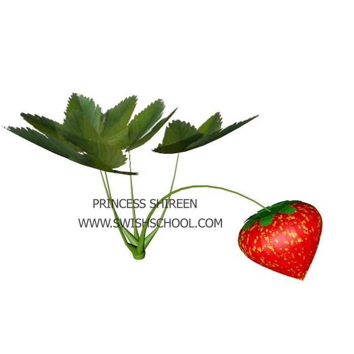 موديل ثمرة فراولة للسينما فور دى مدرسة جرافيك مان