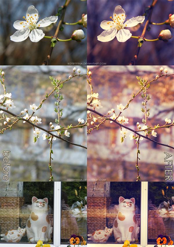 مجموعة متنوعة من اكشن الصور 2013