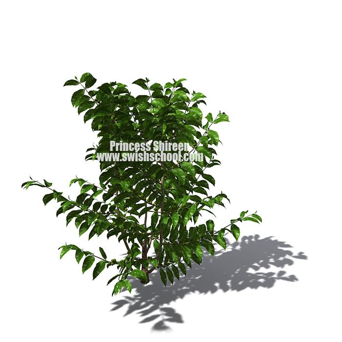 3 موديلات اشجار خضراء للسينما فور دى مدرسة جرافيك مان الجزء الاول