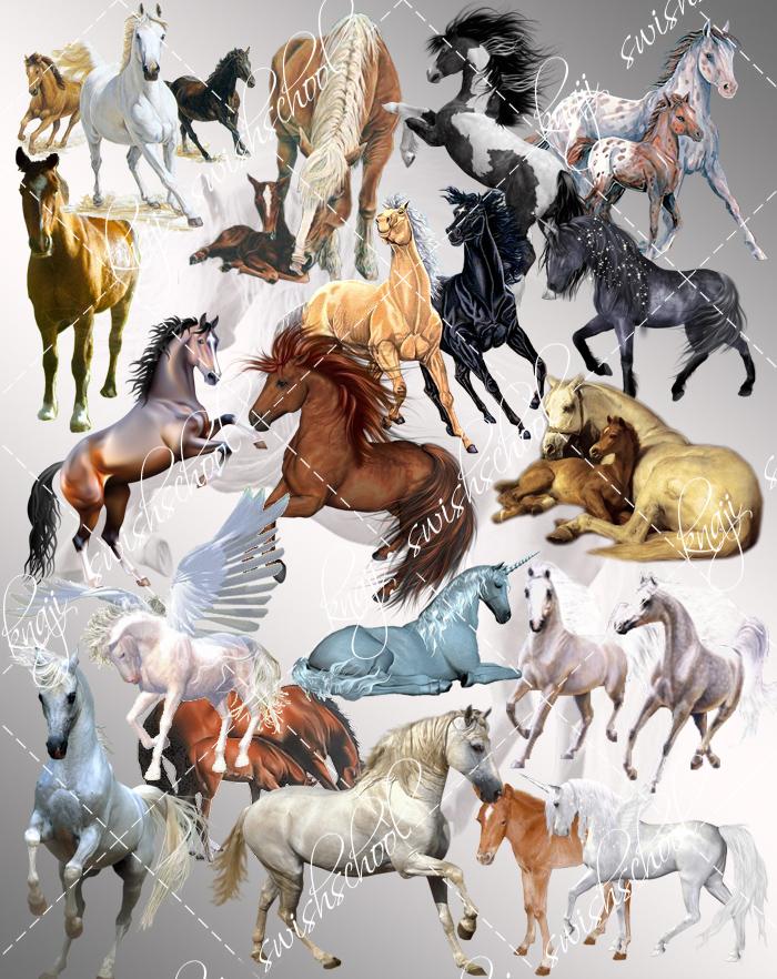 مجموعه رائعه من الخيول  دون خلفيه