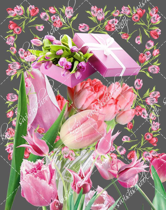 ازهار التوليب الزهري جوده عاليه دون خلفيه