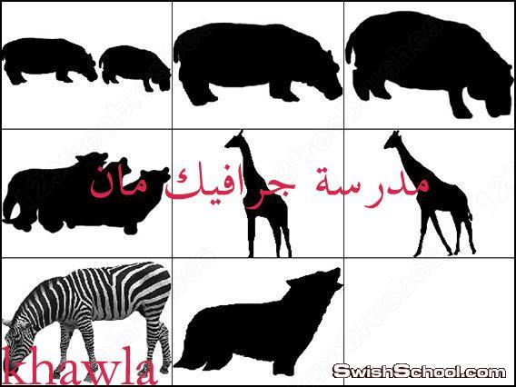 فرش حيوانات