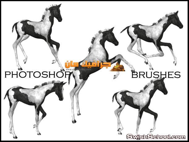 فرش خيول لتصاميم الفوتوشوب