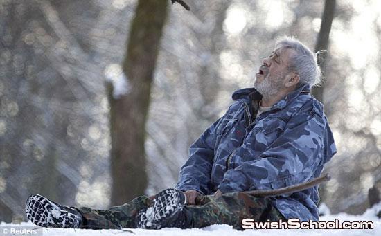 زعيم قطيع الذئاب عجوز الماني