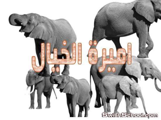 فرش فيل , فيل , افيال , صور مقصوصه , كليب ارت , صور مقصوصه فيل