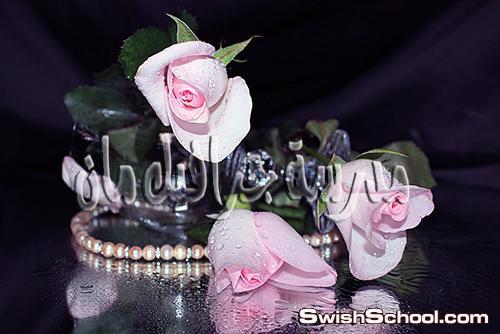 خلفيات فوتوشوب 2013 - خلفيات زهور رومانسيه مع حبات لؤلؤ للتصميم