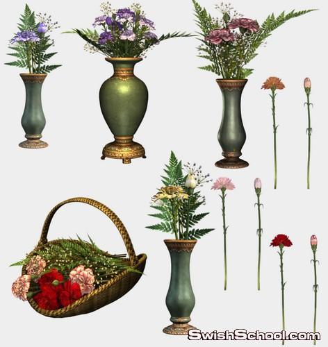 كوليكشن كبير من النباتات المزروعه في اصيص لتزيين المكاتب والحدائق والانتريهات
