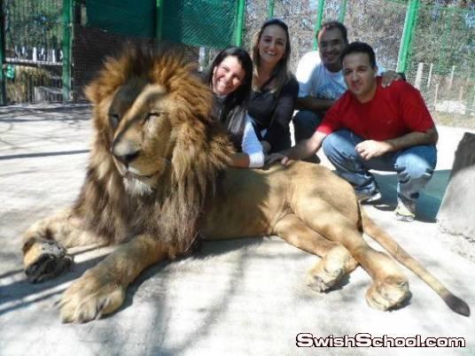 حديقة حيوان «Lujan» تسمح للزوار دخول أقفاص الحيوانات