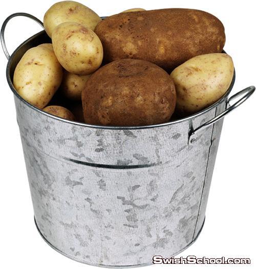 صور مفرغه بطاطس وبطاطا سليمه  png - كليب ارت البطاطس لتصاميم الدعايه والاعلان 2014