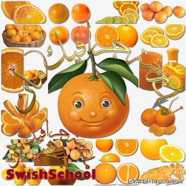 صور شجر البرتقال عاليه الجوده - ستوك فوتو ثمارالبرتقال للتصميم jpg