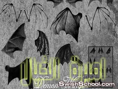 اكبر مكتبه فرش اجنحه فيري وفراشات وخفافيش وطيور , اجنحه , جناح , ريش , طيور , خفاش , وطواط , فراشات , فيري