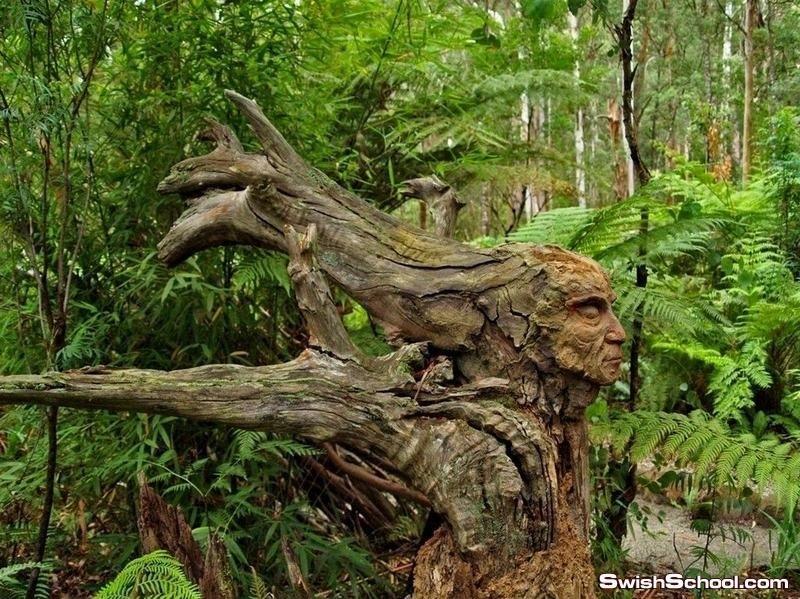 فن ونحت من جزوع الاشجار