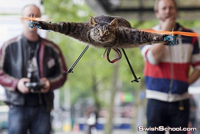 أورفيل كوبتر او القطه الطائره