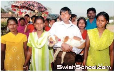 طفله تتزوج من كلب في احدى قبائل الهند