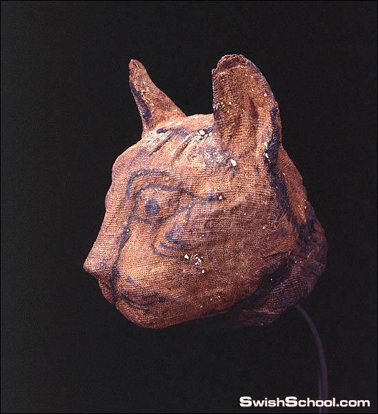 القتل لقاتل القطط عند القدماء المصرين