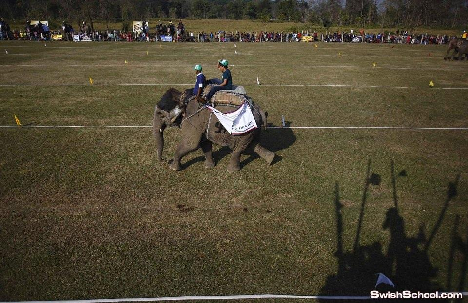 مباراة كرة قدم بين الفيلة في شيتوان النيبالية