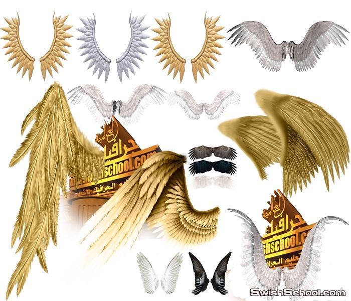سكرابز اجنحه الاساطير والافلام الخياليه للتصميم png- اجنحه فانتازيا png