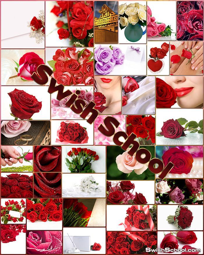 صور وخلفيات ازهار حمراء للتصاميم jpg صور بجودة عالية 2014