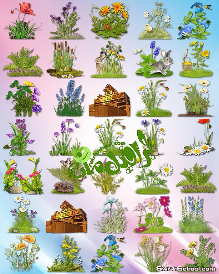 صور مقصوصه زهور مع اعشاب وحشائش لتصاميم الربيع png
