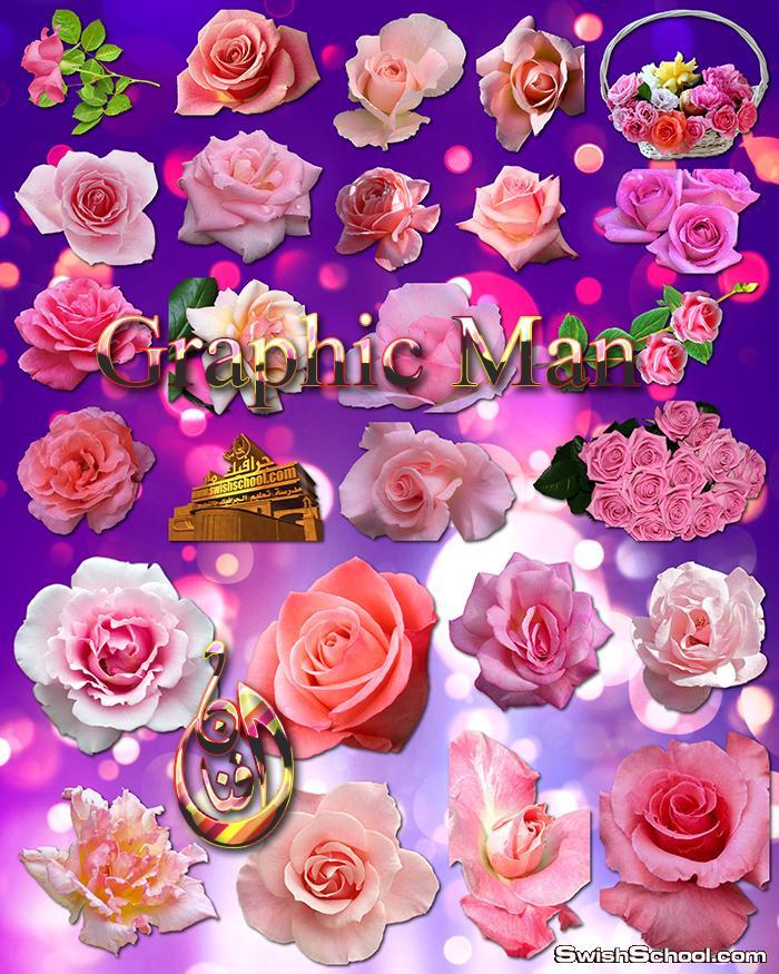 اجمل الورود الروز المفرغه عاليه الجوده png - ورد بينك لتزين كروت الافراح والمناسبات السعيده