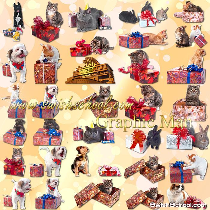 صور مفرغه قطط وارانب وكلاب مع علب هدايا png - سكرابز حيوانات اليفه لتصاميم الكروت والمناسبات