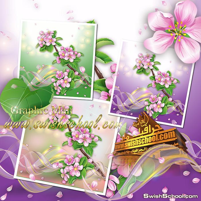 خلفيات ورد الربيع للفوتوشوب psd - خلفيات عاليه الجوده للتعديل عليها