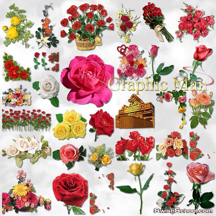 سكرابز ورد - صور مفرغه ورد - كليب ارت ورود لتصاميم الفوتوشوب png - اجمل الورود بدون خلفيه
